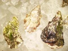 Schnecken, Austern und Sauerkraut – beim Verzehr bitte lächeln …
