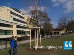 Neuer Schulbushalt in Ladenburg